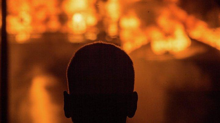 Полыхавший двое суток пожар потушили в Чернобыле