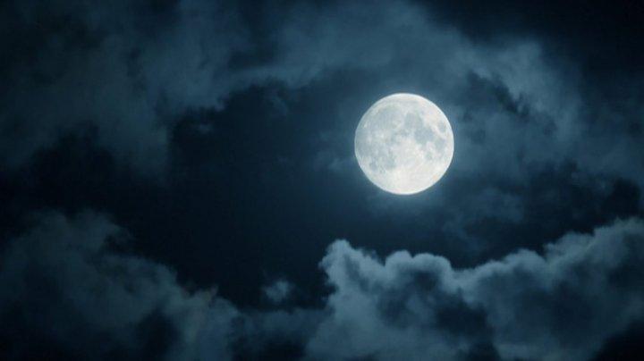 Американка будет судиться с NASA за пробирку с лунным грунтом