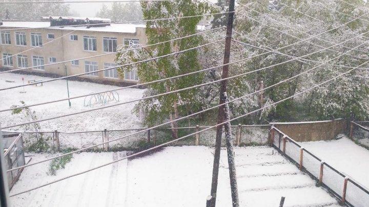 На Камчатке в начале лета пошел снег