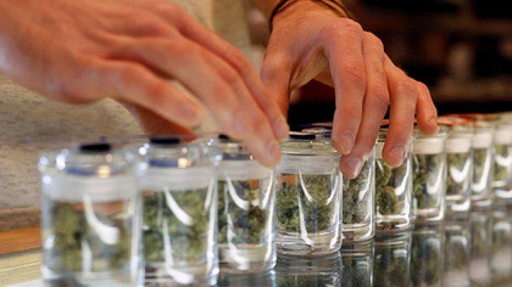 Американским школьникам разрешили марихуану
