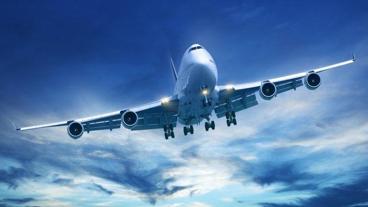 Самолет летал над Новосибирском из-за попавшей в стекло птицы