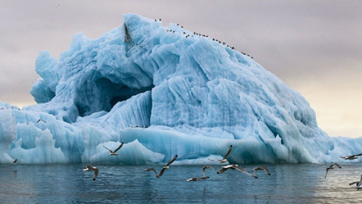 ОАЭ начнут поставку айсбергов из Антарктиды