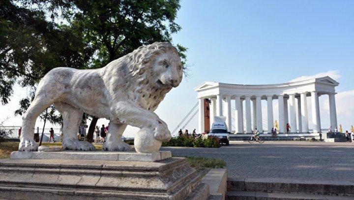 Лошадь упала в обморок во время катания туристов в Одессе: фото