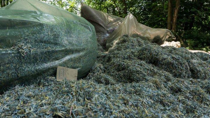 Под Днепром обнаружили мешки с миллионами гривен