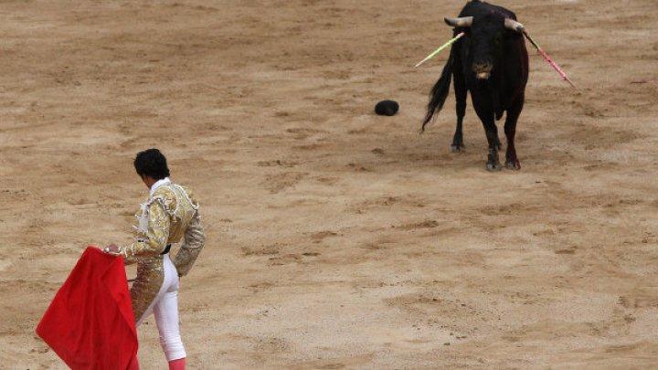 Португальский парламент не стал запрещать корриду