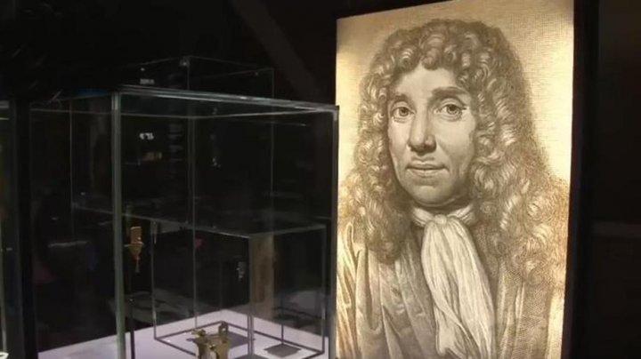 Смертельно опасный яд украли из музея в Ирландии