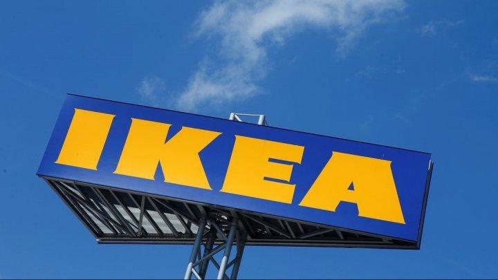 IKEA отзывает поилки для питомцев после того, как в них задохнулись две собаки