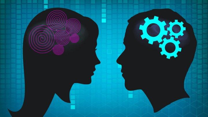 """Учёные доказали, что мозг женщин """"слабее"""", чем у мужчин"""