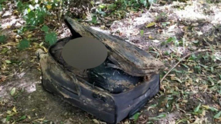 Чемодан с расчлененным телом нашли в московском парке (фото)