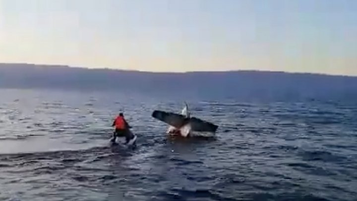 Частный самолёт рухнул в Байкал: видео