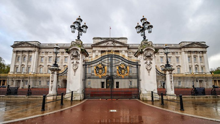 У входа в Букингемский дворец задержали мужчину с электрошокером