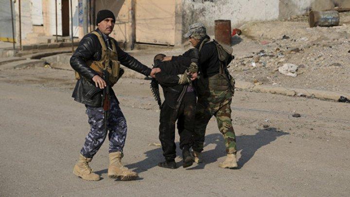 Более 200 граждан СНГ заподозрили в финансировании терроризма