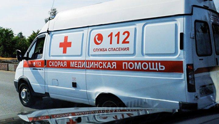 В Ленинградской области девочка погибла после укуса овчарки