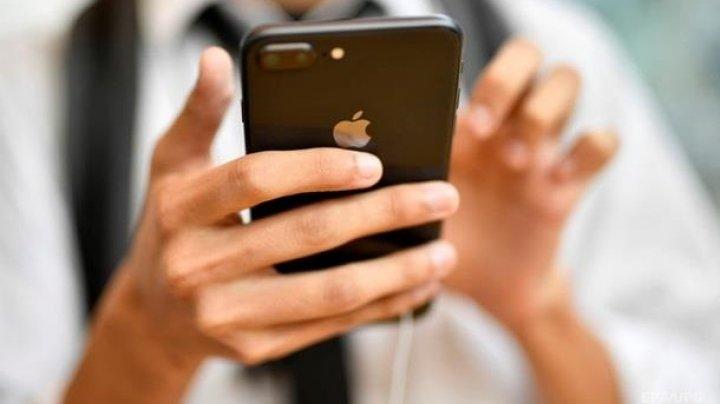 В Дании водительские удостоверения заменят мобильным приложением