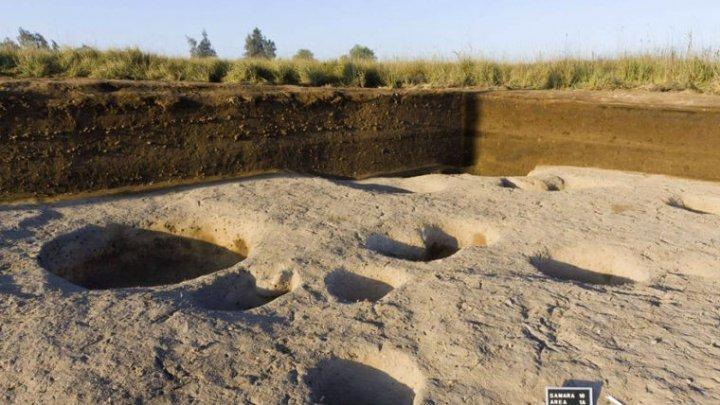 Древнейшее поселение нашли в Египте
