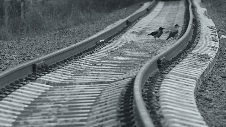 В Китае запустили в эксплуатацию высокоскоростную железную дорогу