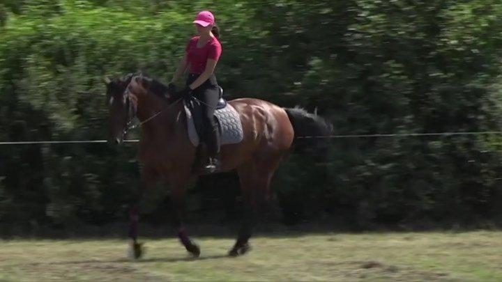 История бельчанки, ставшей тренером по конном спорту в 20 лет
