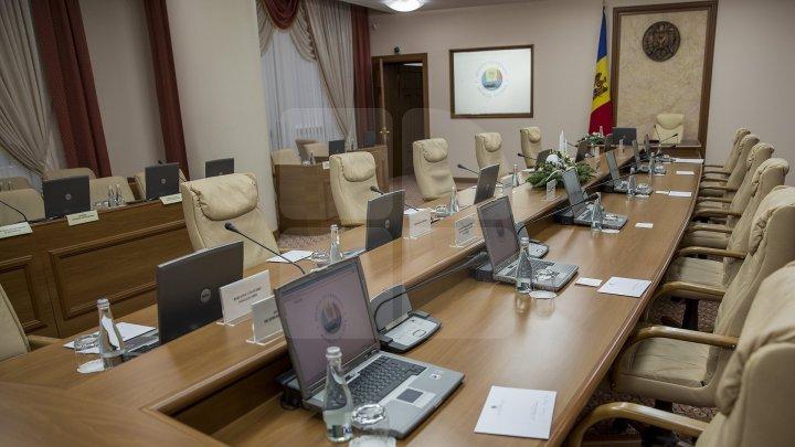 Как отреагировали Сильвия Раду и Николай Чубук на новые должности