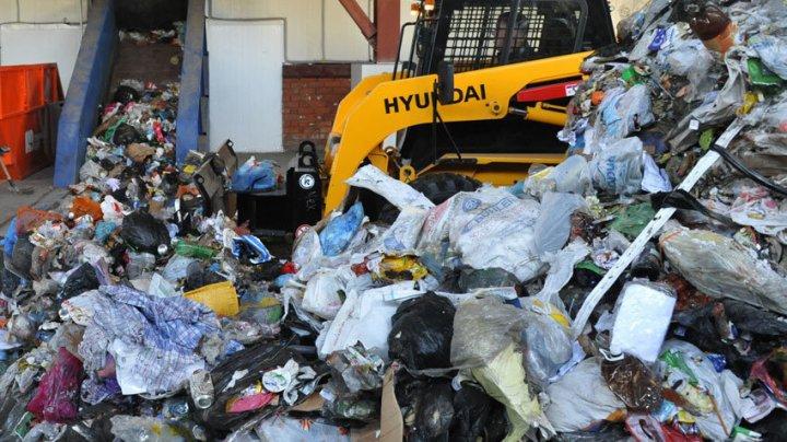 В Швейцарии мужчину посадят в тюрьму за неправильно выброшенный мусор