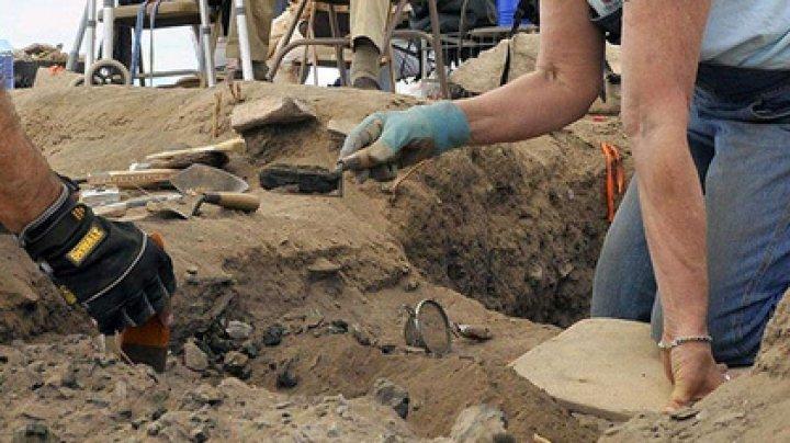 Могилу с сотней человеческих скелетов нашли в Мексике