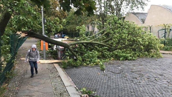 На Германию обрушился штормовый циклон, есть жертвы