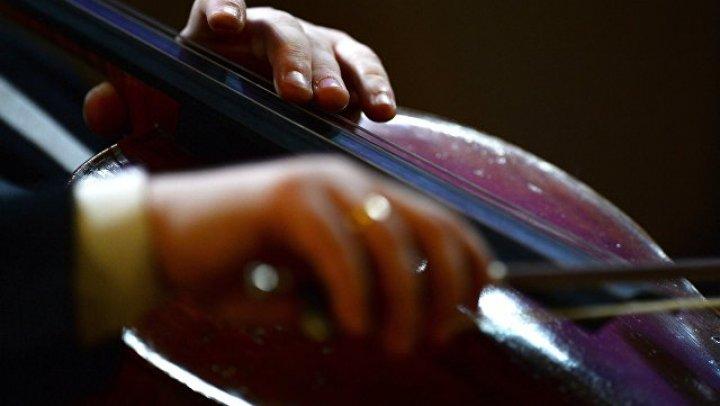 В Швеции концерт классической музыки закончился дракой
