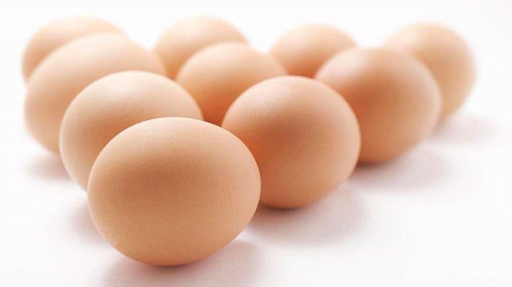 Ученые рассказали, как часто можно есть куриные яйца