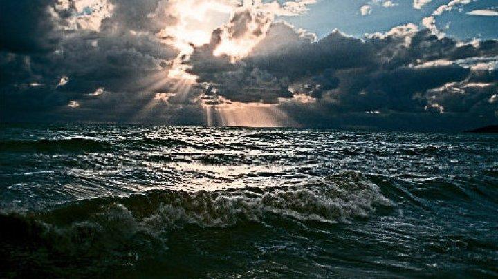 Археологи сообщили об уникальной находке на берегу Черного моря