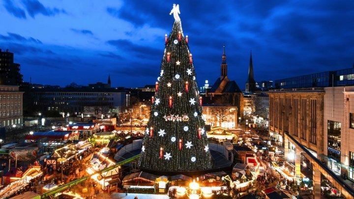 Жители столицы хотят видеть в центре города искусственную ёлку