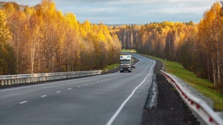 Автобус с туристами съехал в кювет в Карелии