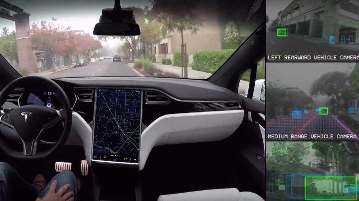 "В электрокар Tesla добавят ""режим собаки"""