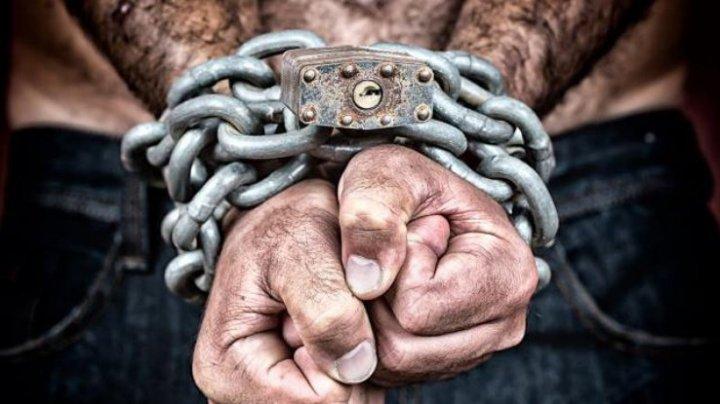 17 молдаван, которые попали в рабство в Испании, вернулись на родину
