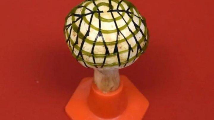 Ученые добыли электричество из грибов