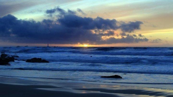 Доказано спонтанное появление жизни в океанах