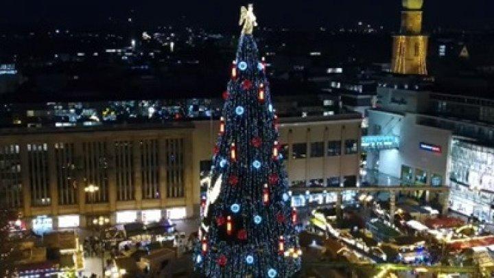 В Германии установили самую высокую рождественскую елку