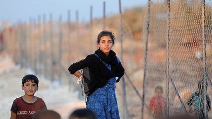 Сирийские беженцы оказались в условиях концлагеря