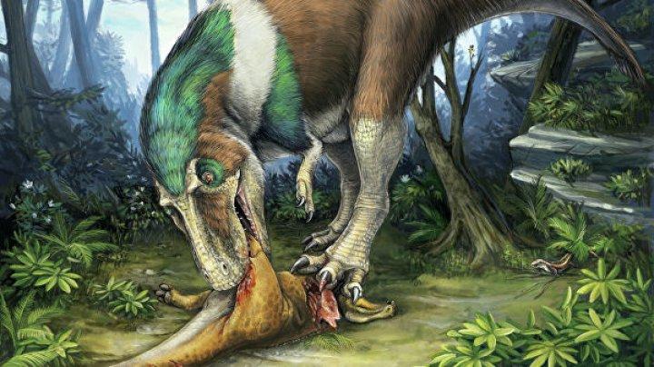 """Ученые нашли в Италии останки """"прадедушки"""" тираннозавра"""