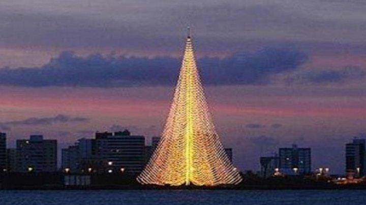 В Бразилии упала гигантская рождественская елка, есть жертвы