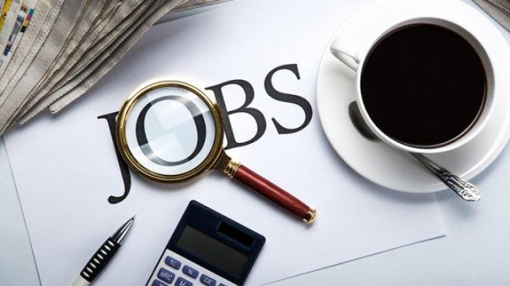 Мужчины и жители городов чаще всего страдают от безработицы в Молдове