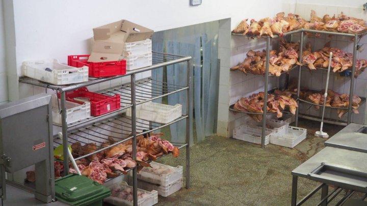 На одном из столичных предприятий конфисковали более 2 тонн мяса