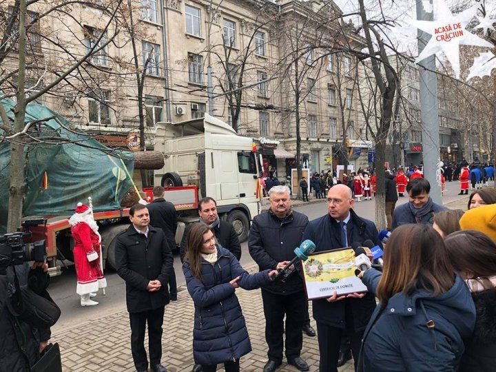 В Кишинев доставили ель из Румынии, которую установят на Рождественской ярмарке (фото)