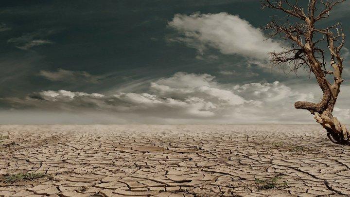 Учёные сообщили о скорой гибели человечества