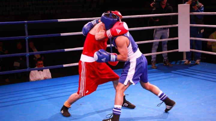 В Кишиневе завершилось первое профессиональное шоу боксеров