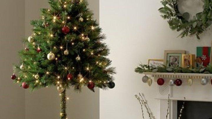 В Британии начали продавать «антикошачьи» елки