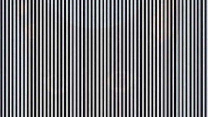 Новая оптическая иллюзия покорила соцсети