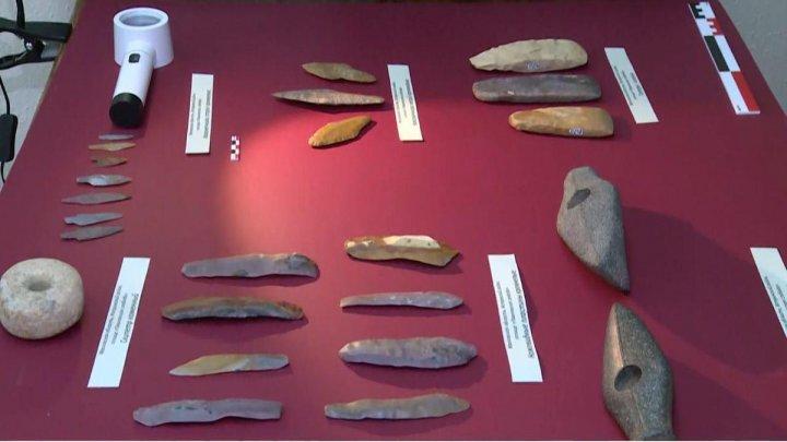 Найденные в Истре древнейшие артефакты отправят на генетическую экспертизу