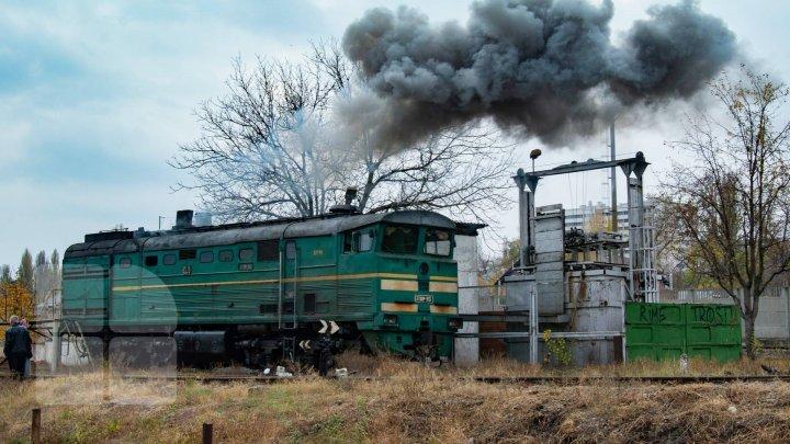 Товарный поезд сбил женщину в Фалештском районе