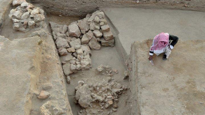 В Египте раскопали «слоновью» крепость