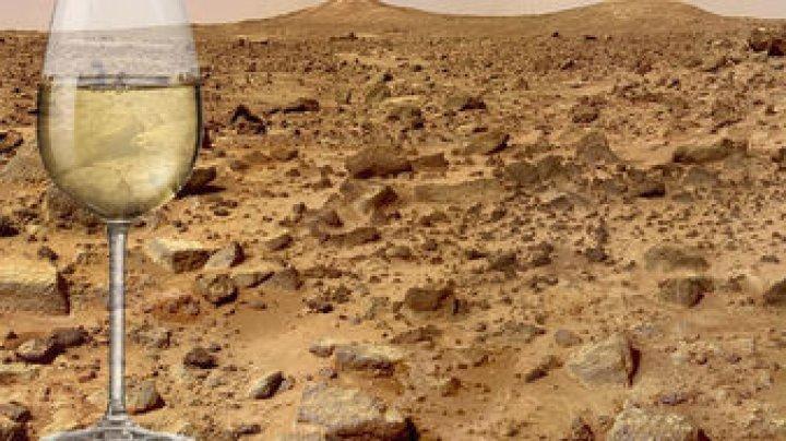 Грузия планирует производство вина на Марсе
