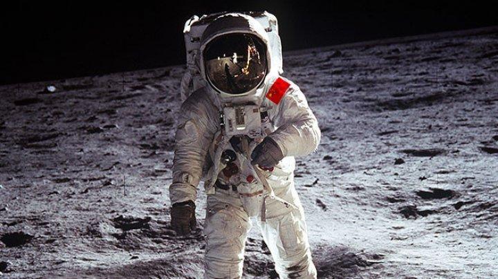 Китайцы вырастили хлопок на обратной стороне Луны
